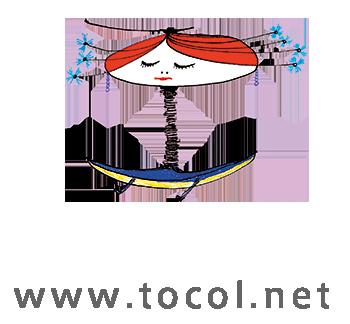 Artcrafts|光と色彩の能力テスト TOCOL